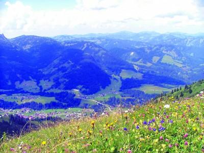 Wenn der Prophet zum Berg geht,  oder: Haldern Pop startet Herbst-Festival in Südtirol.   NN-Foto: HF