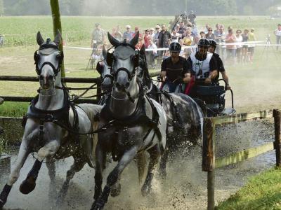 Der Reit- und Fahrverein Rheurdt ist unter anderem für die Turniere auf seiner großen Anlage bekannt. Hier findet am 24. und 25. Juni auch das große Jubiläumsturnier anlässlich des 125-jährigen Bestehens statt. Foto: privat