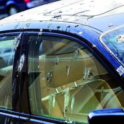 Eine intakte und glänzende Lackierung ist auch ein entscheidender Faktor für den Wiederverkaufswert des Wagens. Foto: spp/ Deutsches Lackinstitut