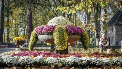 """Der """"Herbstzauber"""" schließt vom 14. Oktober bis zum 5. November die diesjährige Gartensaison ab. Foto: Stefan Koopmans"""