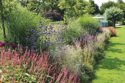 """""""Bei Stauden ist es wichtig, auf Quantität zu setzen"""", erklärt Ben van Ooijen, niederländischer Landschaftsgärtner und Eigentümer der Gärten von Appeltern."""