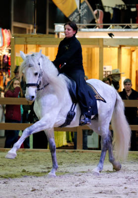 Ob Dressur, Springreiten, Voltigieren oder Quadrillen - auf den Aktionsflächen wird Pferdesport in Perfektion geboten. Foto: privat